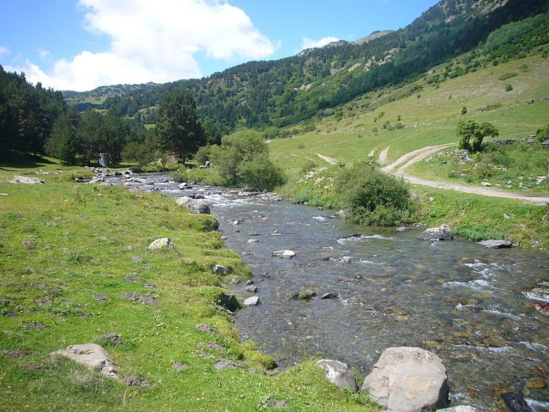 río Noguera Pallaresa junto a Montgarri