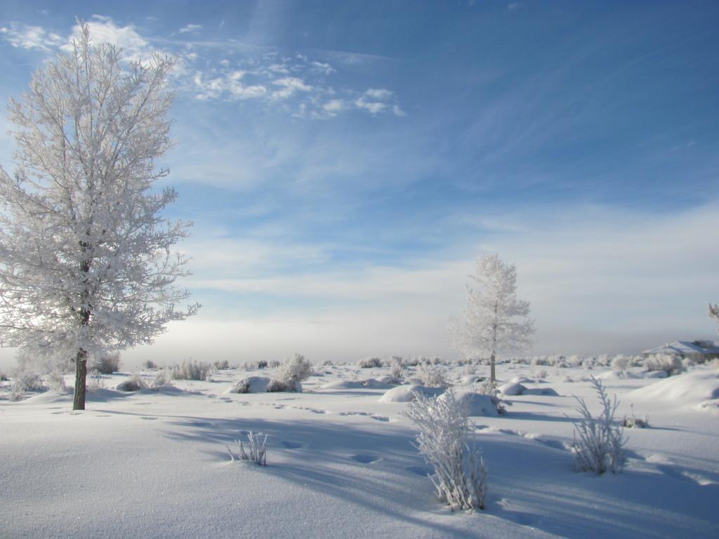 Un elemento clave a la hora de vivir una aventura de invierno, ya sea esquiando o haciendo snow, es saber diferenciar los distintos tipos de nieve