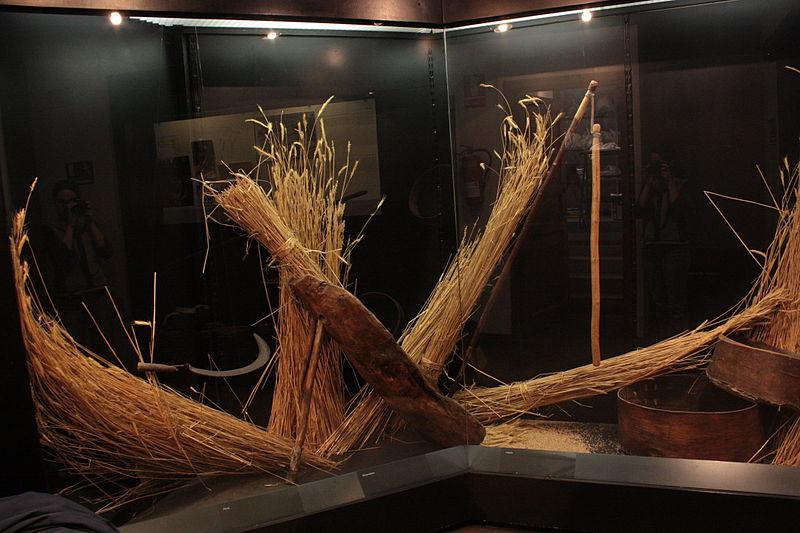 3 museos en el Valle de Arán